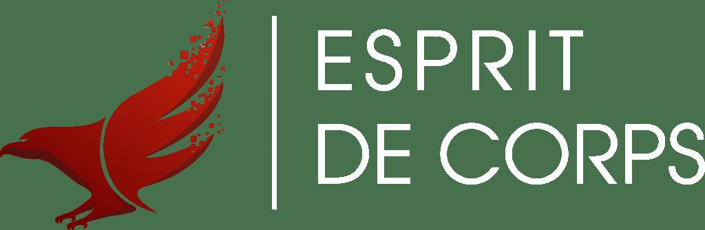 Espirit logo designed by Digitiv